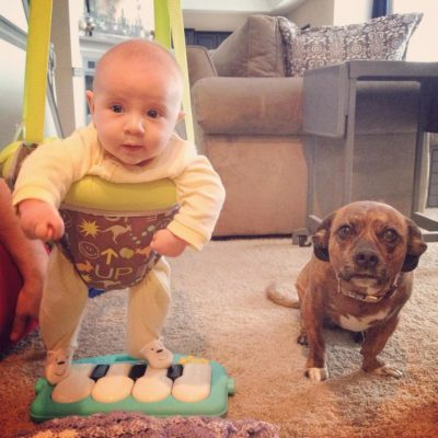 A baby and a medium sized dog named Addie