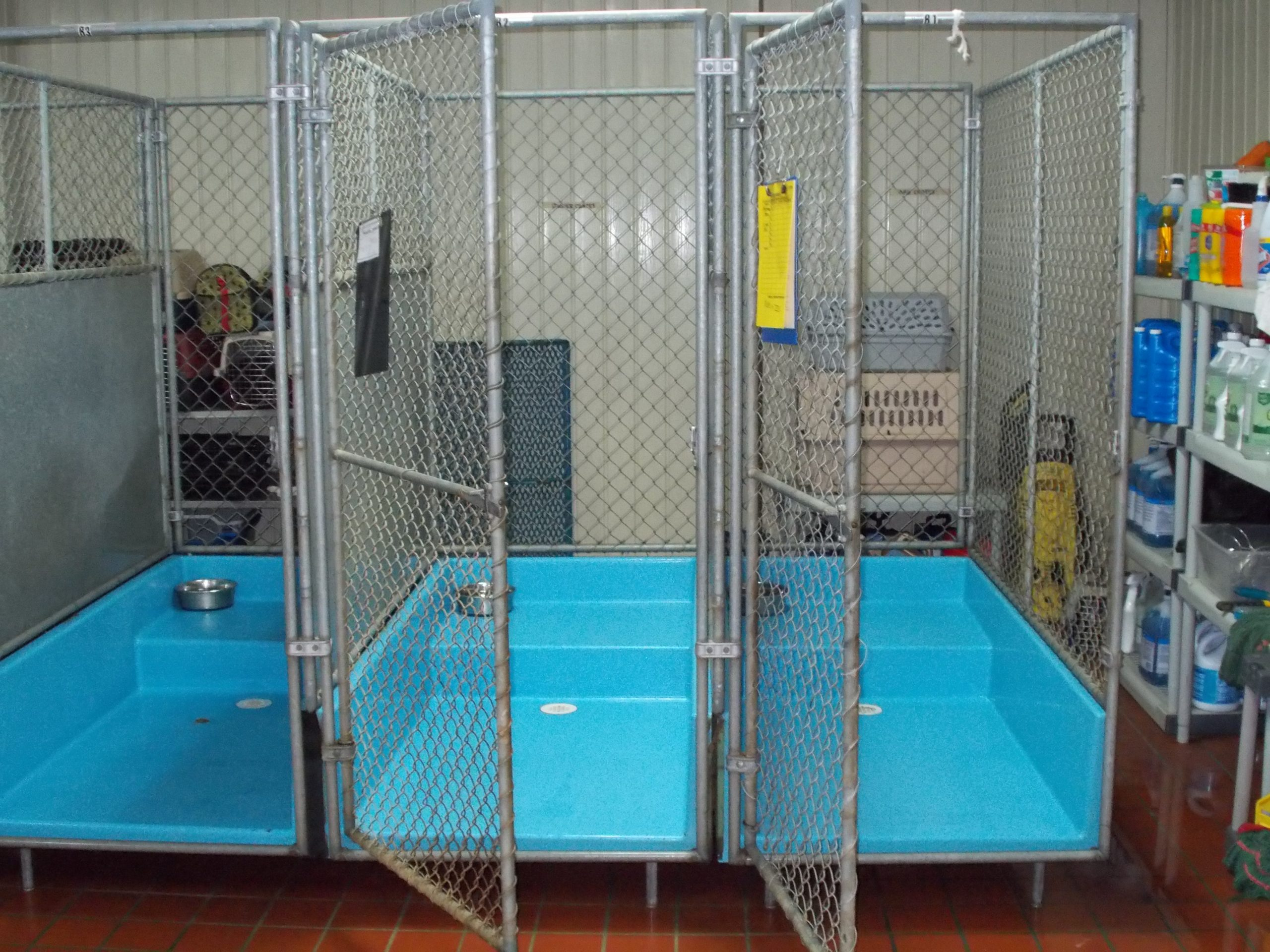 Three of the dogs kennels